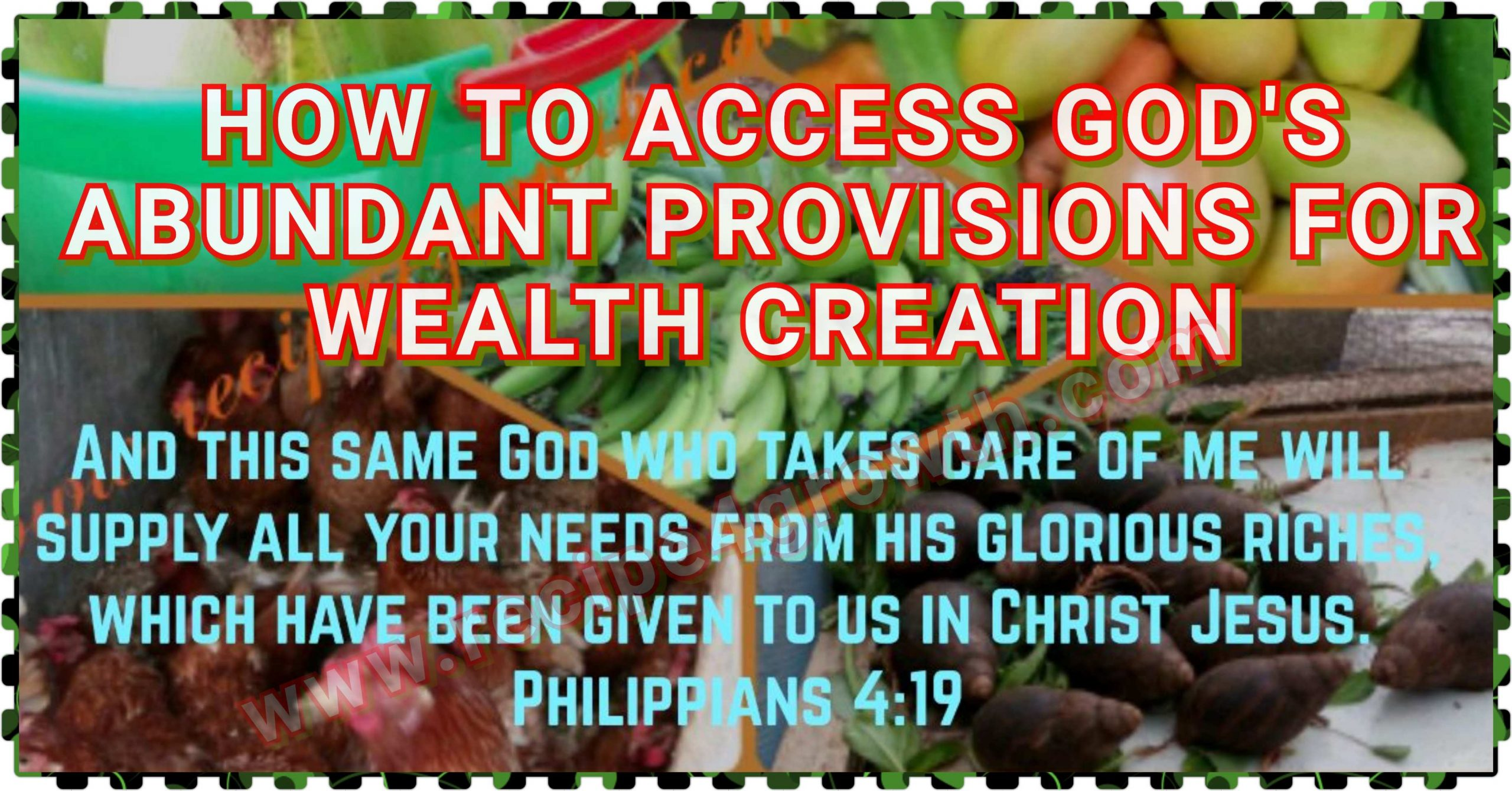HOW TO ACCESS GOD'S ABUNDANT PROVISIONS
